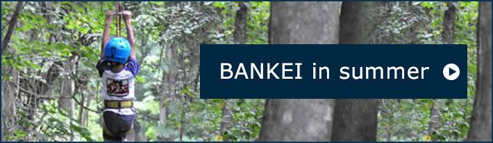 BANKEI in Summer